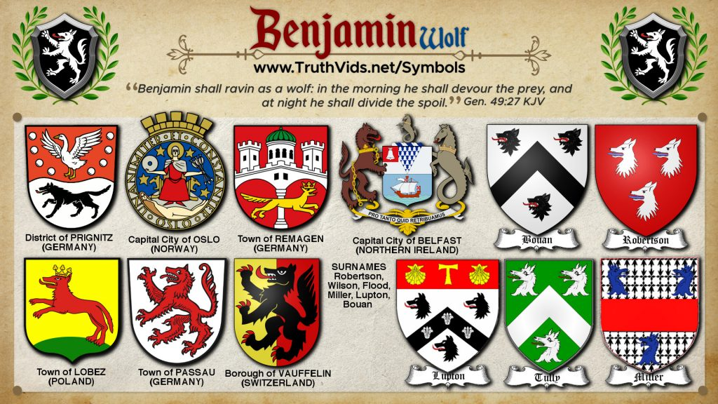 Heraldry of Benjamin a tribe of Israel the Wolf Cross Symbol